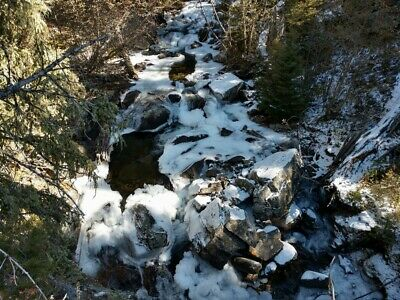 GOLD MINE Historic Sheridan MT Fire Water Placer 20 Acre Gold Mining Claim