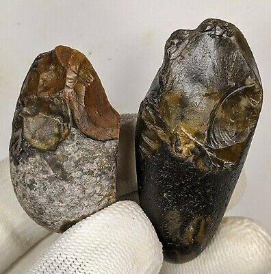 Lower Palaeolithic, x2 Clactonian Mode 1 Pebble Tools c400k years BP