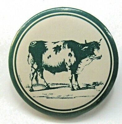 """older DAIRY COW larger 1.75"""" pinback button ^"""