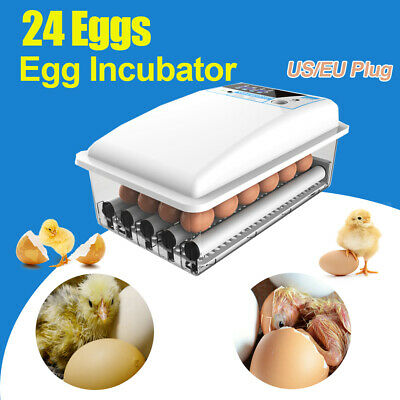 Digital 24 Egg Auto Turning Incubators Chicken Poultry Alarm Hatcher +Flashlight