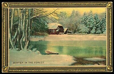 Winter in the Forest Vintage Postcard Posted