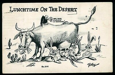 Cow Vulture Bunnies Lunchtime on the Desert Petley Old Postcard Posted 1950