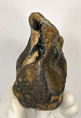 Lower Palaeolithic Mode 1 Proto Hand Axe on a River Cobble c700,000 Years