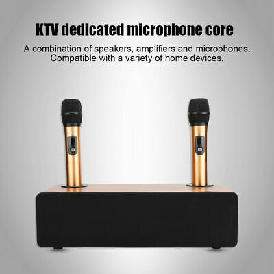 Portable Karaoke Home Audio Set Bluetooth 5.0 Speaker System Wireless Microphone