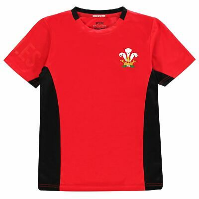 Team Rugby Boys Poly T Shirt Junior Short Sleeve Crew Neck T-Shirt Tee Top Kids