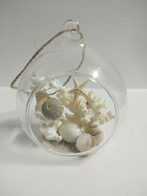 Sea shell and coral glass decorative hangers. Beach home #1