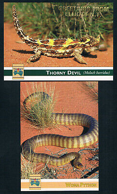 2 POSTCARDS REPTILES OF NORTHERN TERRITORY THORNY DEVIL WOMA PYTHON Lizard Snake