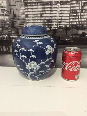Large Chinese 19Th Century Prunus Jar / Tea Caddy Kangxi Style
