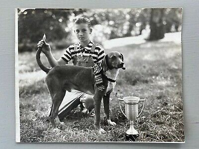 Vintage Photograph Dog Show Champion Coon Dog 1941 Ribbon Trophy Rochester MN