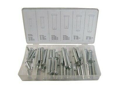 Pins Clevis 60pc Assortment (Kit)