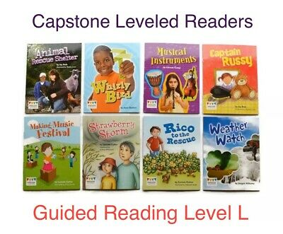 Lot of 8 CAPSTONE Grade 2 *Guided Reading Level L* Leveled Readers Homeschool