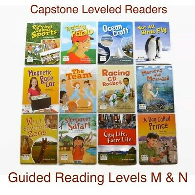 Lot of CAPSTONE Grade 2 *Guided Reading Level M & N * Leveled Readers Homeschool