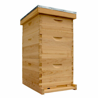Bee Hive Complete 8 Frame 2 Brood 1 Super with Frames and Wax Coated Foundations