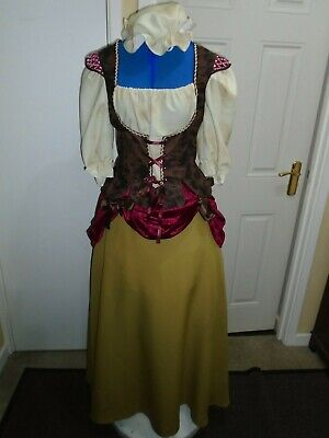 Medieval  ladies wench costume medium size 36 bust