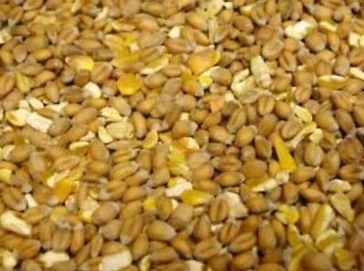20Kg Gm Free Mixed Corn Chicken Feed /Duck/Geese/ Wild Fowl/Gamebird Food