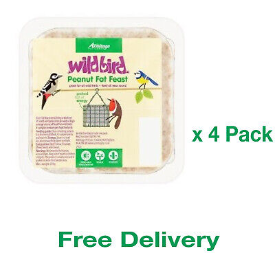 Wild Bird Peanut Fat Suet Feast Garden Food Feeder Tables Natural x 4 Pack