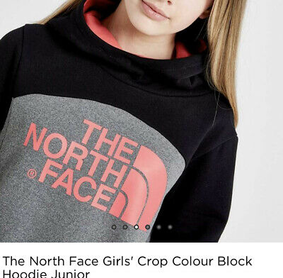 the north face girls cropped hoodie size L