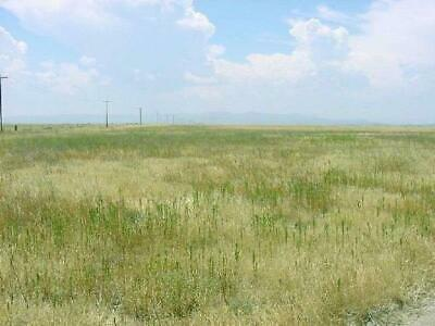 50 acres! No reserve-Warranty deed! starting way below tax value!