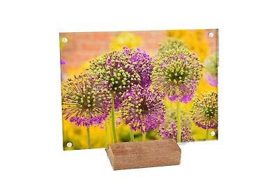 Kramerica Acrylic Picture Frame 5x7 (5 Pack)