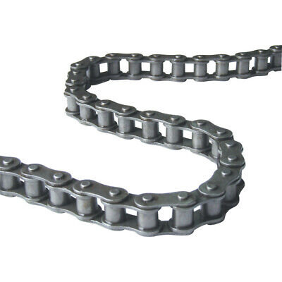 Regina 16B-2 British Std Rollerchain DIN8187 (10FT)