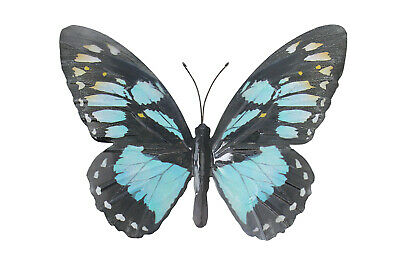 Primus Large Metal Butterfly - Cyan Garden Wall Art Ornament Indoor or Outdoor