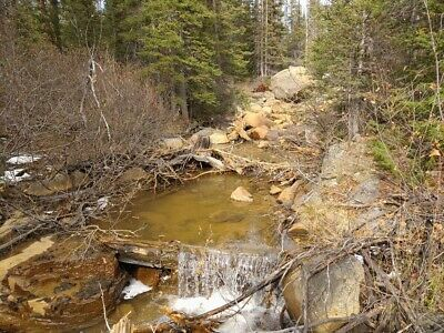 GOLD MINE Historic Basin MT Black Stone Placer 20 Acre Gold Mining Claim