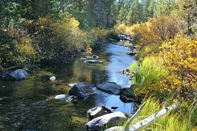 Wyoming Gold Mining Claim Silver Producer Seclusive Placer Mine 2 Wheel Drive-NR