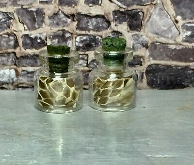 B254 Witchy Bottles 1pc Halloween Dollhouse Miniature Potion Witch 1:12