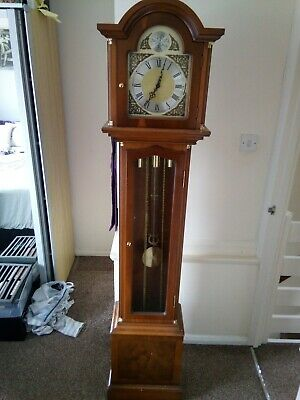 Clock grandfather - Tempus Fugit