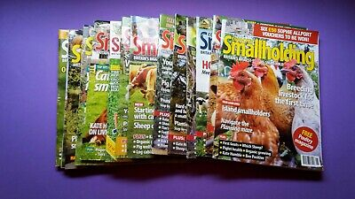 Country Smallholding Magazine 28 x Issues 2013 to 2015
