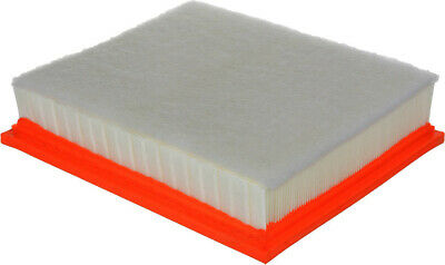Air Filter-Extra Guard Fram CA11895