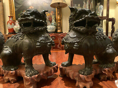 A Pair Large and Rare Chinese Ming Dynasty Bronze Foolions with Rosewood Stands.