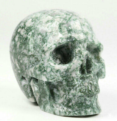 """1.9"""" Green Moss Agate Carved Crystal Skull, Realistic, Crystal Healing"""