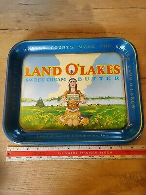Mint Cond. Vintage 1980s LAND O LAKES Butter Metal Advertising Serving Tray 13""