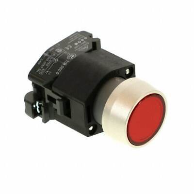 (704.062.2X) Lighted Pushbutton/