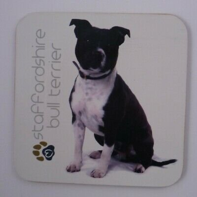 PET ANIMAL COASTER  IN SUPPORT OF PDSA//RSPCA