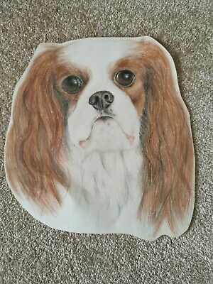 Vintage Hand drawn picture of a Cavalier King Charles Spaniel Ready to frame