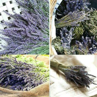 Natural Dried Flowers Lavender Bundles Lavender Buds Lavender L6C0 Fresh D7X1
