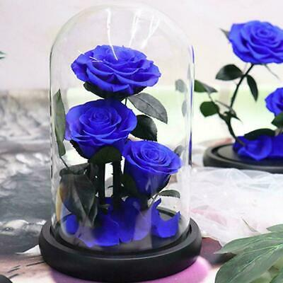 1X Preserved Rose Glass Dome Real Flower Forever Love For Women Gifts F9D7