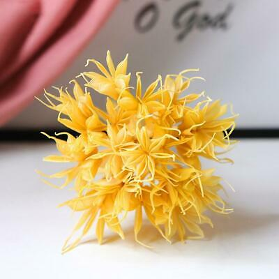 1 Bunch Dried Natural Flowers Branch DIY Dry Star Anise Flower For Home L4F0