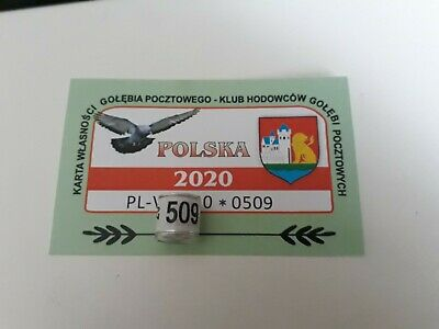 PL 2020 pigeon ring with card