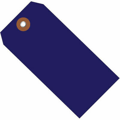 "6-1/4""x3-1/8"" Plastic Shipping Tag, Blue, 100 Pack"