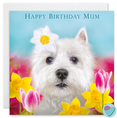 Boys Mens Birthday Cards Dad Son Brother Grandad to or from Cockapoo dog lover
