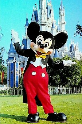 Goofy at the Magic Kingdom Details about  /Mickey Mouse Disney World Postcard Pluto