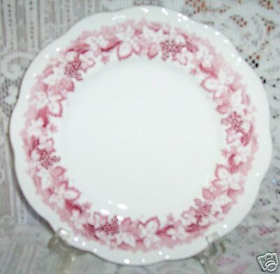 VINE RED PLATE BREAD SALAD PLATES J & G MEAKIN GRAPES