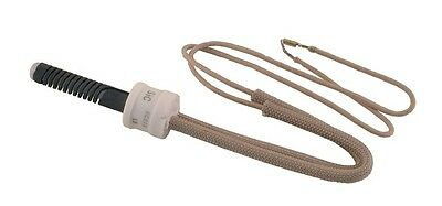 IGNITOR no cage for Blodgett Gas Oven/Range NEW 61437