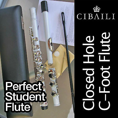 WHITE and SILVER C foot Flute • BRAND NEW • Case • Perfect For School Student •