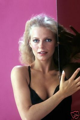 Cheryl Ladd Busty Sexy Pose By Window 8X12 Photo Rare