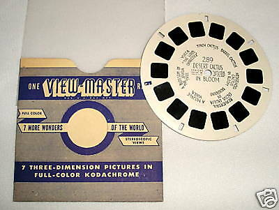 Viewmaster 289 Desert Cactus in Bloom - HL - MINT