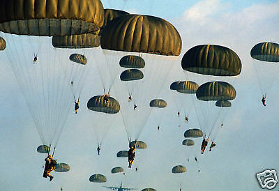 82nd Airborne Division Army Bright Star Paratroopers